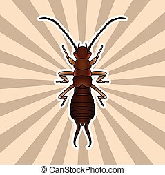 Insect anatomy. Sticker Forficula auricularia. Earwig. Sketch of Earwig.Earwig Design for coloring book. hand-drawn outline Earwig. Vector