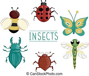Insect Elements Illustration