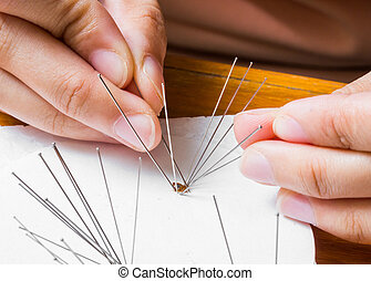 Use of insect entomology pins to set bedbug or cimex on white paper