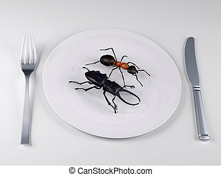 Insect food on a plate, the future food concepts