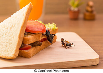 Insect food - Sandwich made of fried insect meat and...