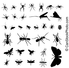 large set of different insect silhouettes with high detail