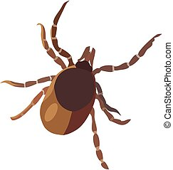 Insect tick, isolated vector