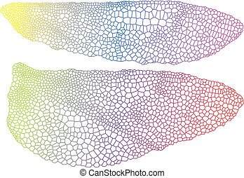 colorful wings with delicate texture, vector background