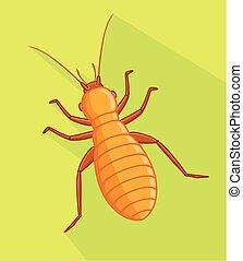insecte, vecteur, pou