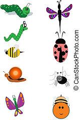 insectes, blanc