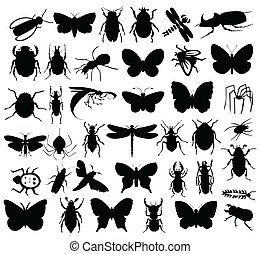insectes, colour., illustration, silhouettes, vecteur, noir