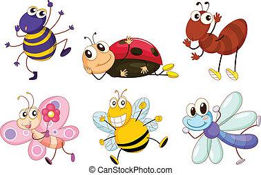 insectes, différent, bogues