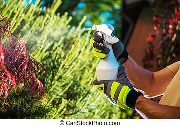 Insecticide Garden Plants