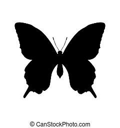 insecto de mariposa, negro, silueta, animal