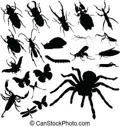 insecto, grupo, vector, siluetas
