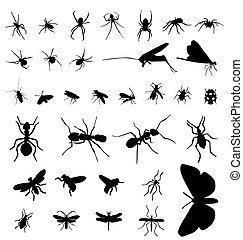 insecto, siluetas, colección