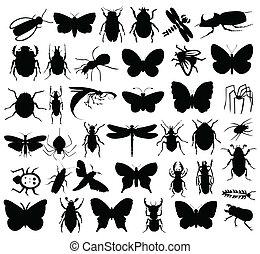 insectos, colour., ilustración, siluetas, vector, negro