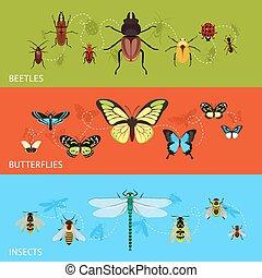 insectos, conjunto, bandera