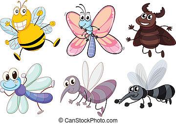 insectos, vuelo, seis