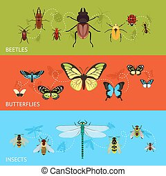 Insects colored decorative banner flat set with beetles and butterflies isolated vector illustration