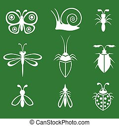 Insects set on green background