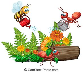 Insects watering the plant on white background