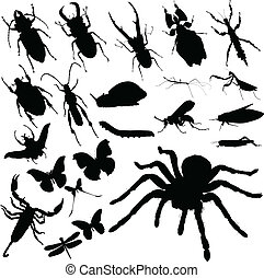 insekt, vektor, gruppe, silhuetter