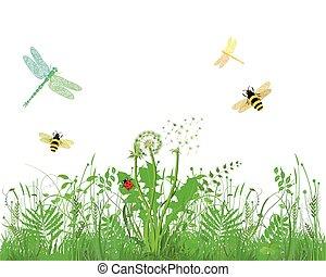 insekten.eps, bienen