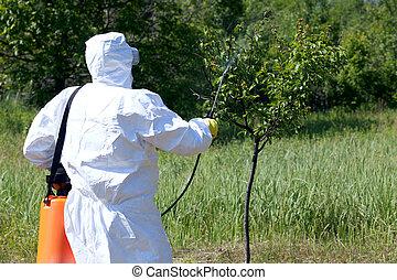 insektsmedel, spraying., plåga, management.