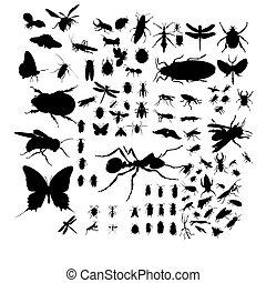 insekty, komplet