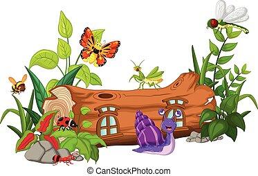 insekty, rysunek, zbiór