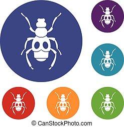 inseto, jogo, besouro, ícones