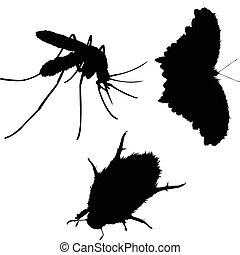 inseto, vetorial, silhuetas