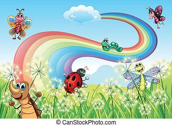 insetos, arco íris, diferente, hilltop