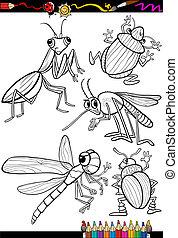 insetos, coloração, jogo, livro, caricatura