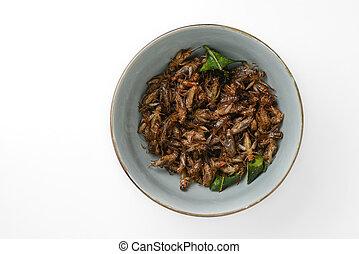 insetos, fritado