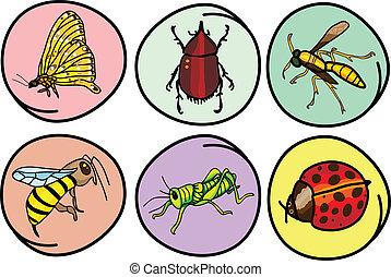 insetos, jogo, redondo, fundo