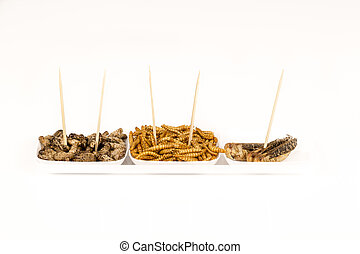 insetos, locustídeo, fritado, grilos, molitors