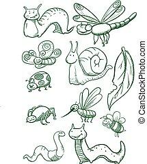 insetos, set.