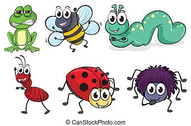 insetos, vário, animais