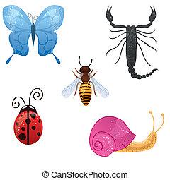 insetti, carino, vettore, set