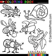 insetti, libro, coloritura, errori del software