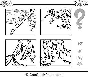 insetti, supposizione, coloritura, pagina