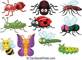 insetto, cartone animato, collezione, set