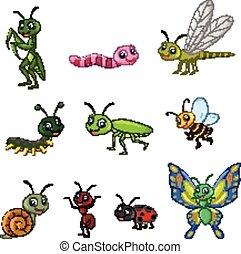 insetto, cartone animato, collezione