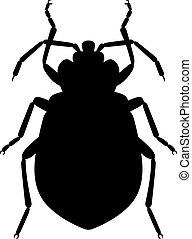 insetto, letto
