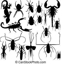 insetto, vettore, silhouette