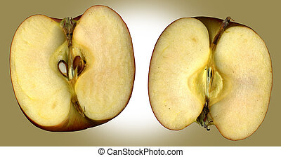 Inside of an old apple