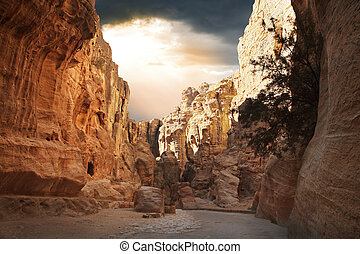 Inside Siq - Fantastic beauty of the Siq gorge in Petra,...