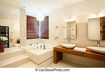 Inside the bathroom - Inside the luxury stylish bathroom