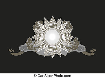 Insignia - star shaped with banner . Blank so you can add...