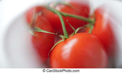 Inspecting Branch of Tomatoes with Magnifying Glass