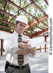 inspektör, konstruktion, -, skepsis