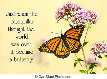 Inspirational quote on life by an unknown author with a pretty monarch butterfly perched at a flower.